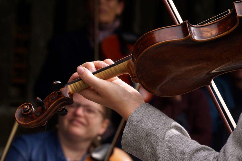 Violin Viola Cello Bass Beginner Orchestra